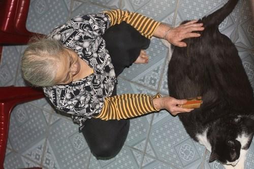 Bà Nga người sở hữu chú mèo khủng nặng tới 20kg. Ảnh Một Thế Giới