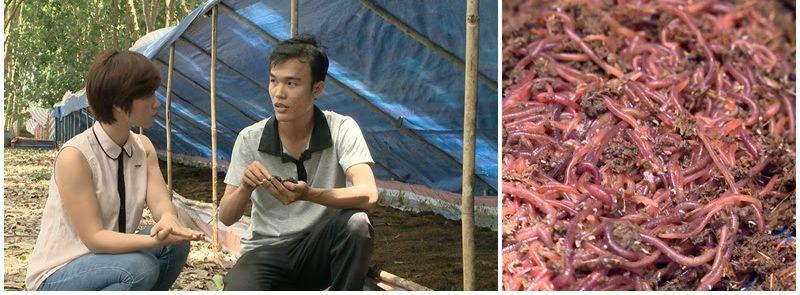 9X Nguyễn Văn Sang làm giàu từ trùn quế. Ảnh: VTV6