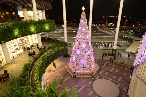 Cây thông Neol ở Aeon Mall