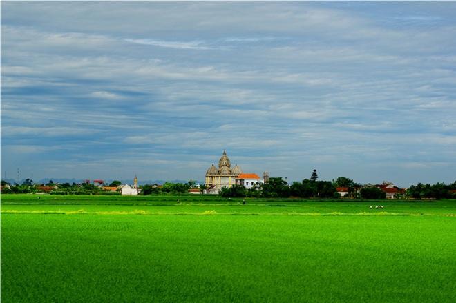 Cánh đồng lúa xanh ngát mênh mông cho ra đời những hạt gạo ngon xếp vào hàng đặc sản. Là một trong những tỉnh có nhiều nhà thờ đẹp nhất cả nước, các công trình tôn giáo ở Nam Định càng làm tăng thêm vẻ an yên cho cảnh vật nơi đây.