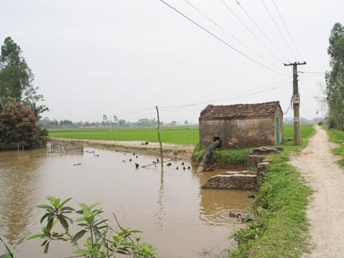 Sông Thiên Phái nay chỉ còn là con mương cấp nước cho cánh đồng của hai làng