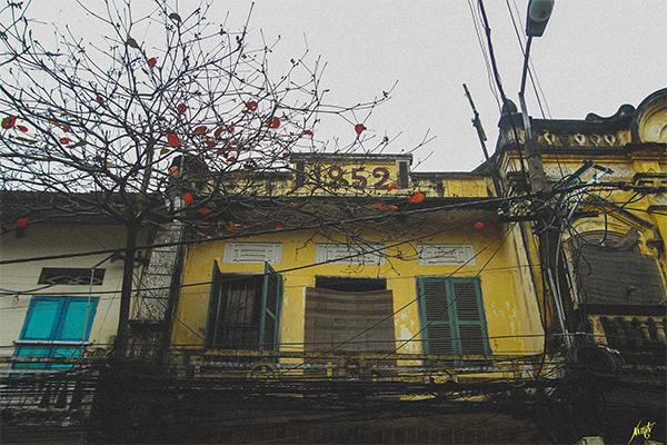Một ngôi nhà cổ Tại Thành Nam