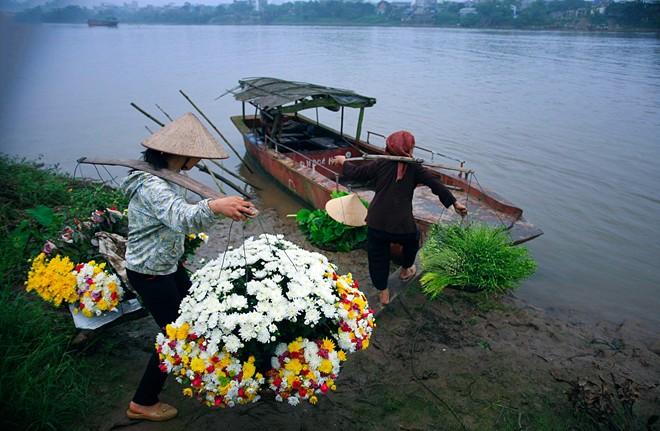Từ làng hoa ra thành phố có một cây cầu nhưng các bà, các cô chọn đi đò cho nhanh.