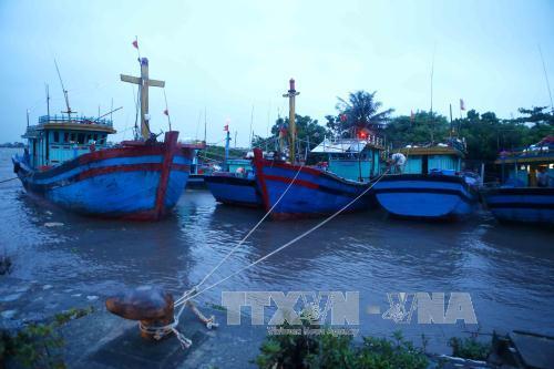 Tàu thuyền đã về nơi trú ẩn an toàn tại Cảng cá Ninh Cơ (huyện Hải Hậu). Ảnh: Minh Quyết/TTXVN