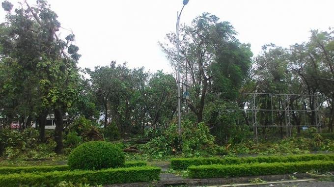 Vườn cây bóng mát khu vực hồ Vị Xuyên tan hoang sau bão số 1. Ảnh: Duy Tám.