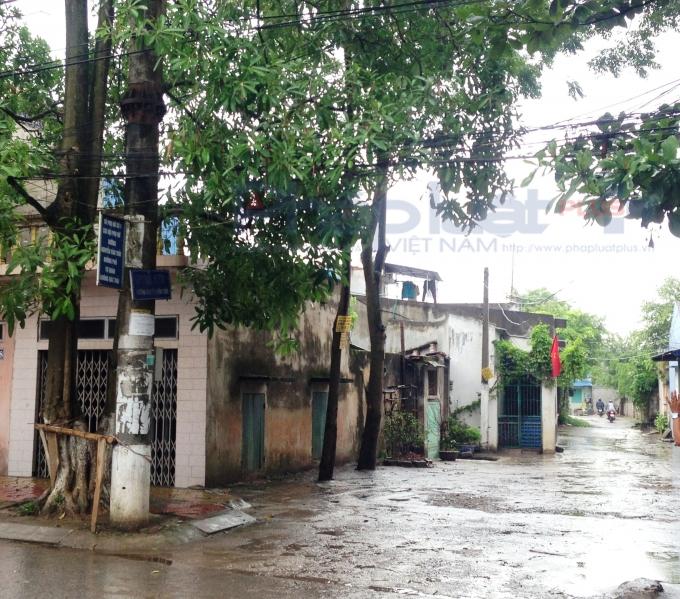 Ngõ 186, đường Nguyễn Văn Trỗi hiện có khoảng 200 hộ dân đang sinh sống trong tình trạng 3 không.