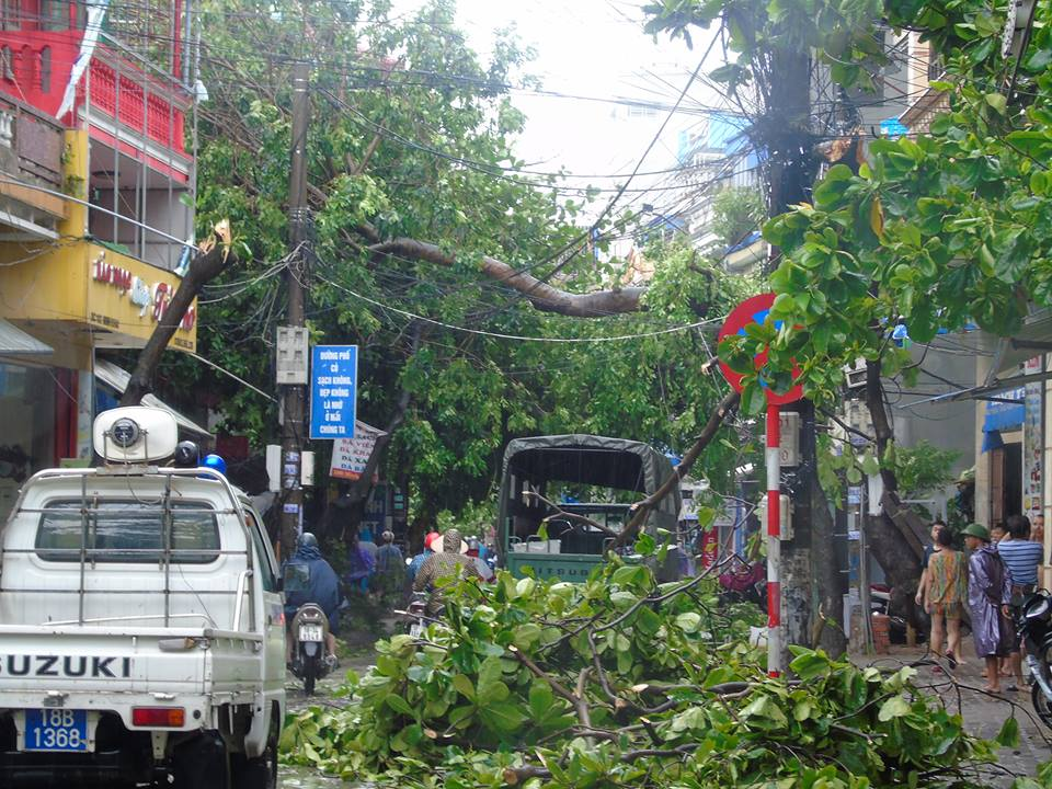 Trung tâm thành phố Nam Định - Photo: cậu bé người gỗ