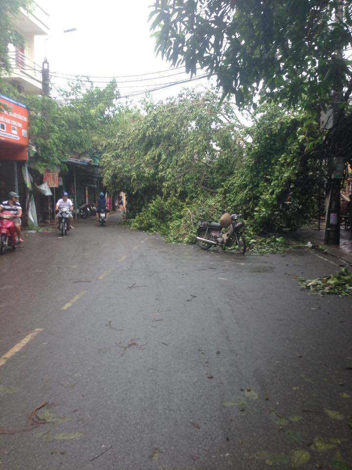 Trần Thái Tông Nam Định