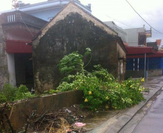 Mưa lớn và giông gió xuất hiện trên nhiều địa phương ven biển của tỉnh Nam Định ngay trong sáng 27/7