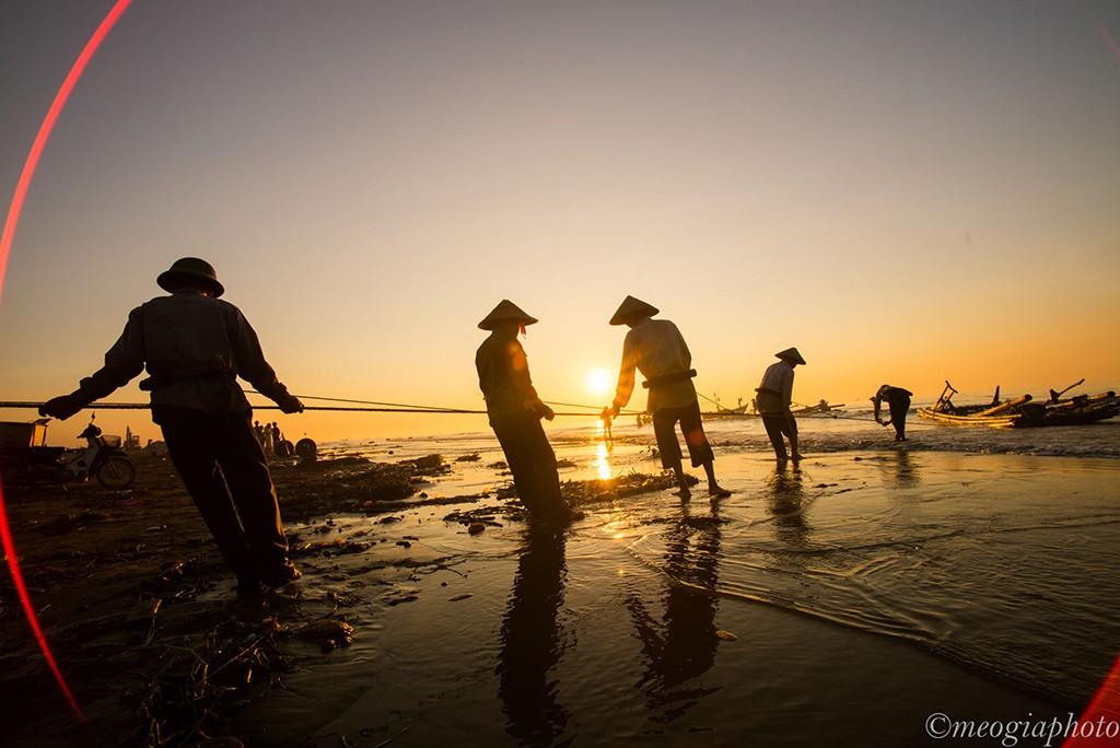 Họ cần mẫn kéo lưới trên bãi biển trong ánh nắng sớm vàng như mật.