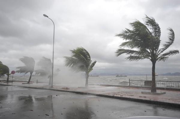 Do ảnh hưởng của bão số 3, đêm qua vùng biển Nam Định có gió giật cấp 6