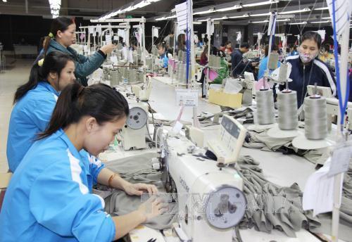 Vinatex Nam Định sẽ sản xuất 50.000 cọc sợi vào năm 2017