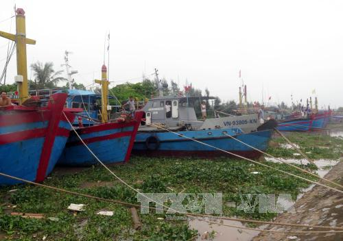 Tàu thuyền của ngư dân tránh trú bão tại khu neo đậu tàu thuyền thị trấn Thịnh Long, huyện Hải Hậu. Ảnh: Văn Đạt/TTXVN
