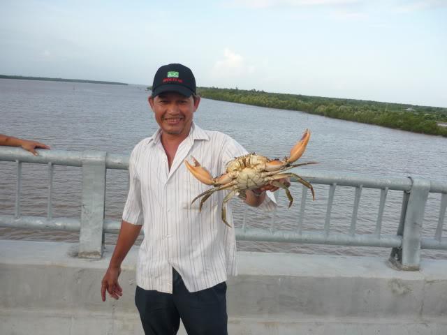 Trong hành trình đầy thú vị này du khách có thể mang về cả những con cua biển do chính mình câu được làm quà cho người thân.