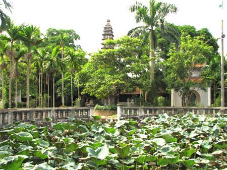 Tháp chùa Phổ Minh ẩn hiện tronh những tán cây xanh