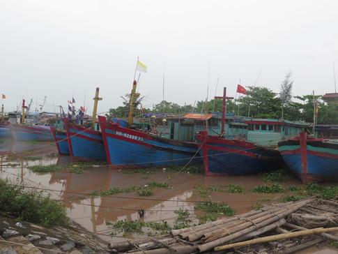 Nhiều chủ tàu tại Nghĩa Hưng đã chủ động neo tàu vào bãi để tránh bão số 7