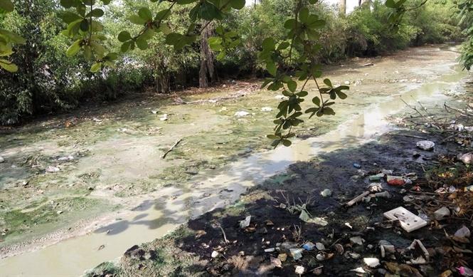 """Một màu nước vàng đục chưa qua xử lý được thải ra sông """"chết"""" ."""