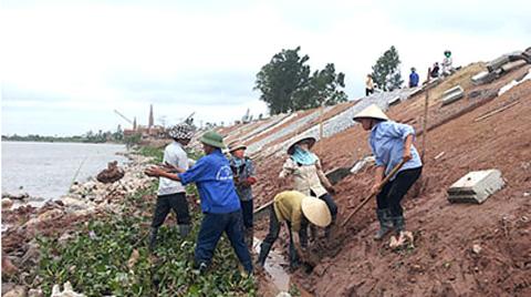 D.A di dân khẩn cấp vùng sạt lở bãi sông Ninh Cơ (Nam Định): Nhiều năm triển khai vẫn chậm tiến độ D.A di dân khẩn cấp vùng sạt lở bãi sông Ninh Cơ nhằm đảm bảo an toàn tính mạng người dân mùa lũ bão. Ảnh: PD