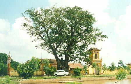 Đền chùa Hà Cát xã Hồng Thuận – Giao Thủy Nam Định