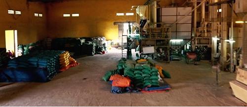 Gạo Hương Giang xuất ra thị trường khoảng 1.700 tấn các loại mỗi năm. Ảnh: bizmedia.