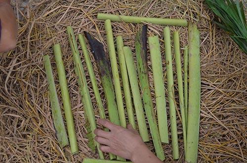 Trước khi nướng người dân thường cho cuống của lá chuối đặt lên trên rơm để cá khỏi bị cháy