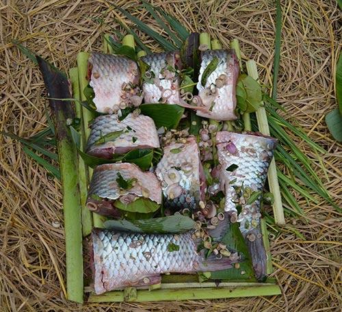 Cá được trải đều ra trước khi úp chậu nướng