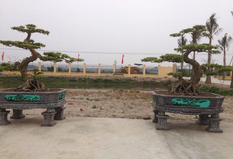 Làng nghề coi đây là báu vật, đặt ở vị trí trang trọng của trụ sở ủy ban xã Điền Xá