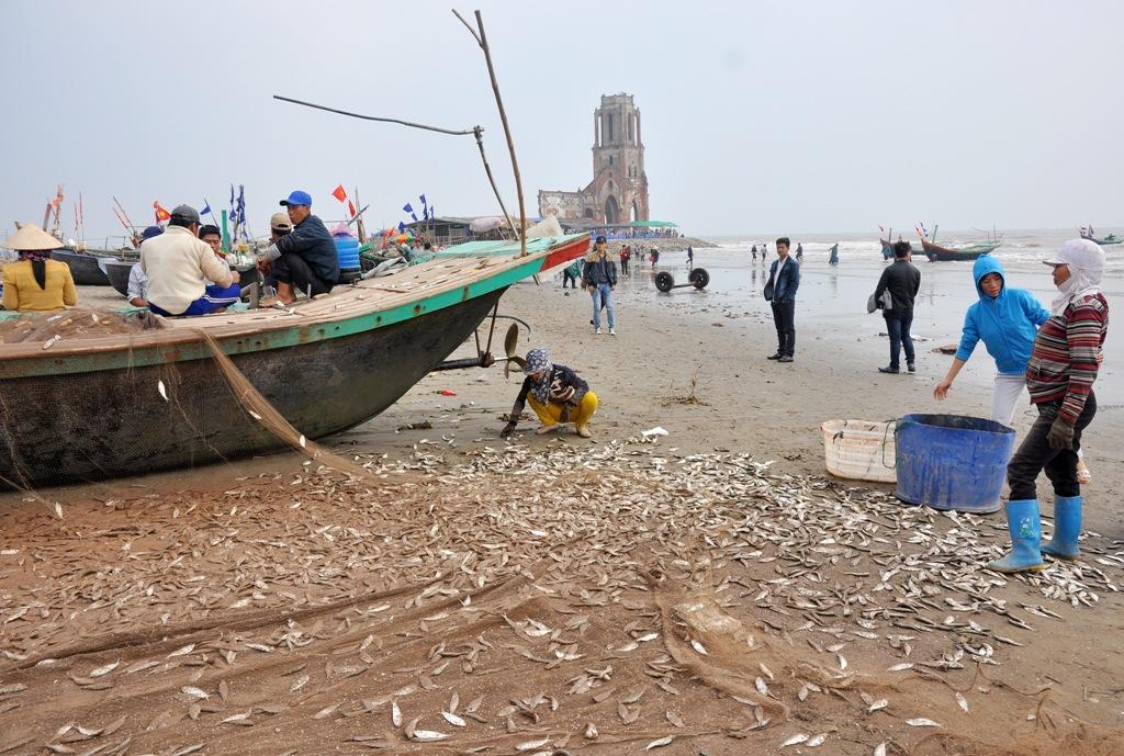 Làng chài Xương Điền cách TP. Nam Định 50 km. Đây là điểm đến của nhiều du khách từ khắp mọi nơi bởi nét đẹp hoang sơ và chứng tích thời gian - nhà thờ đổ.