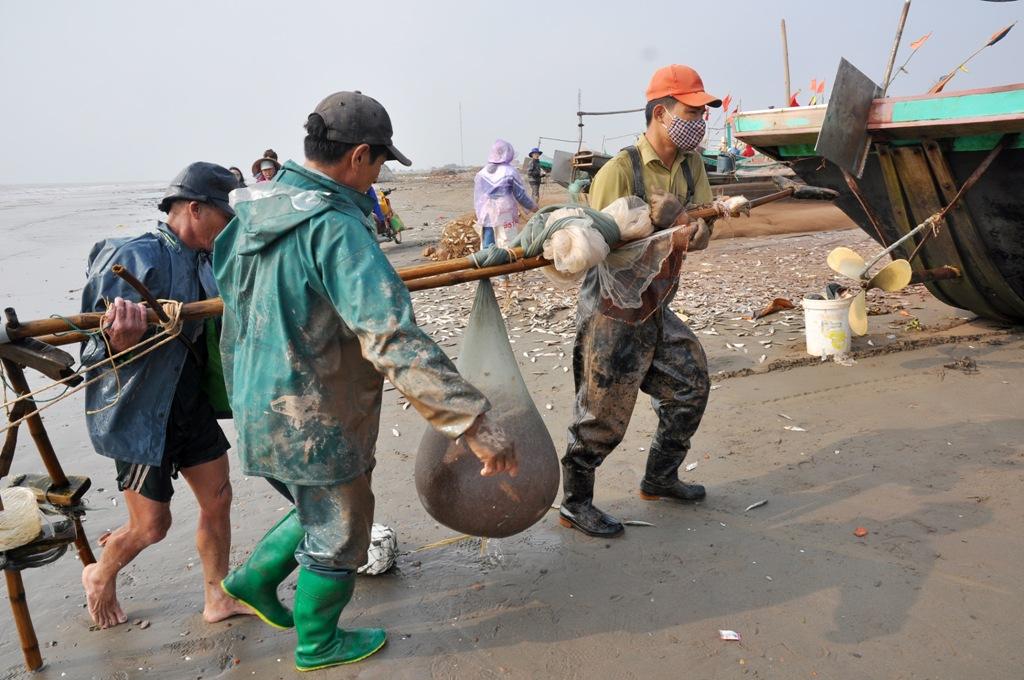 """Từ những thuyền đánh bắt chuyên nghiệp tới người dân đi cà kheo đun tép cũng """"trúng"""" đậm trong những ngày Tết này."""