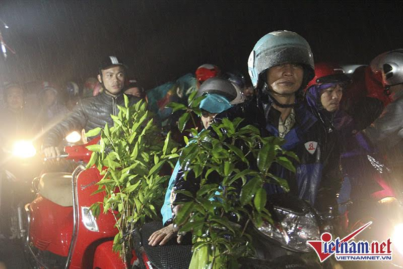 Mua xong cây thì phải dắt bộ xe máy dưới mưa