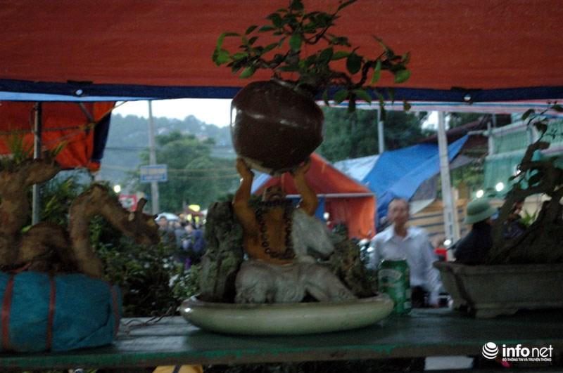 """Trong khi đó, anh Vũ Văn Cường chủ nhân của cây cảnh có ông tượng đang nâng cây cho biết: """"Giá bán cây cảnh có ông tượng đang nâng cây là 6 triệu đồng. Gian hàng của tôi mang ra đây bán năm nay có tổng trị giá hơn 100 triệu đồng""""."""