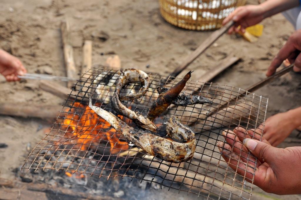 Những con cá cùi được mọi người nướng ngay dưới bãi biển.