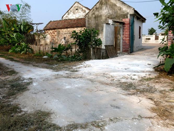 Ngay sau khi phát hiện dịch cúm gia cầm, Trung tâm y tế dự phòng tỉnh Nam Định đã tăng cường công tác khoanh vùng dịch và phòng chống dịch cúm lây truyền từ gia cầm sang người. Trong ảnh: đường vào nhà hộ có gia cầm ốm chết đều được rắc vôi trắng.