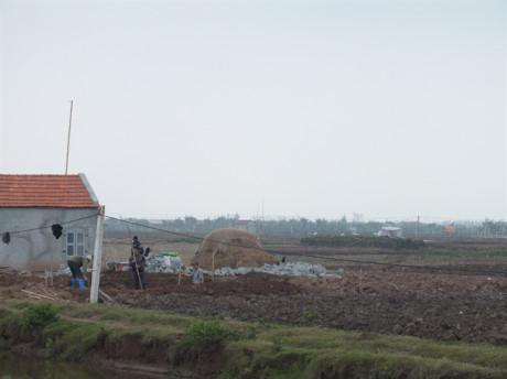 Từ chỗ cho không ai nhận, đất lúa sau chuyển đổi ở Nam Định có giá hàng trăm triệu đồng/sào.