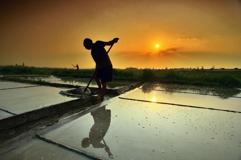 Trên đồng muối - Ảnh: Minh Duc Nguyen