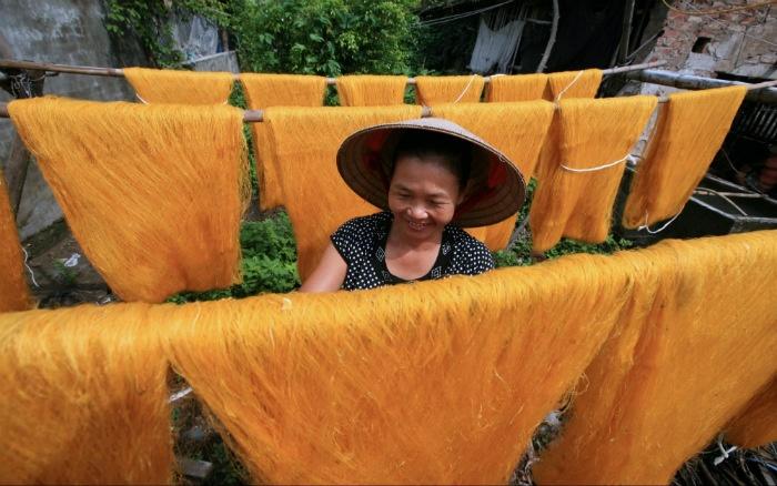 Những sợi tơ vàng óng ánh dưới nắng - Ảnh: Le Bich