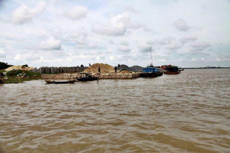 Điều gì đã làm nên sản phẩn gạo Tám xoan Hải Hậu thượng hạng