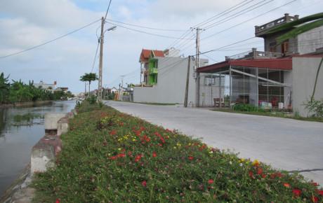 Dọc một con đường ở xã Hải Toàn