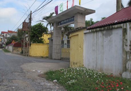 Những khu đất trống trước cổng trường được tô màu bởi sắc hoa mười giờ