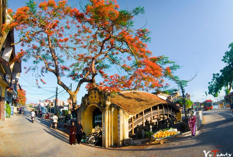 Khám phá cầu cổ đẹp nhất Việt Nam