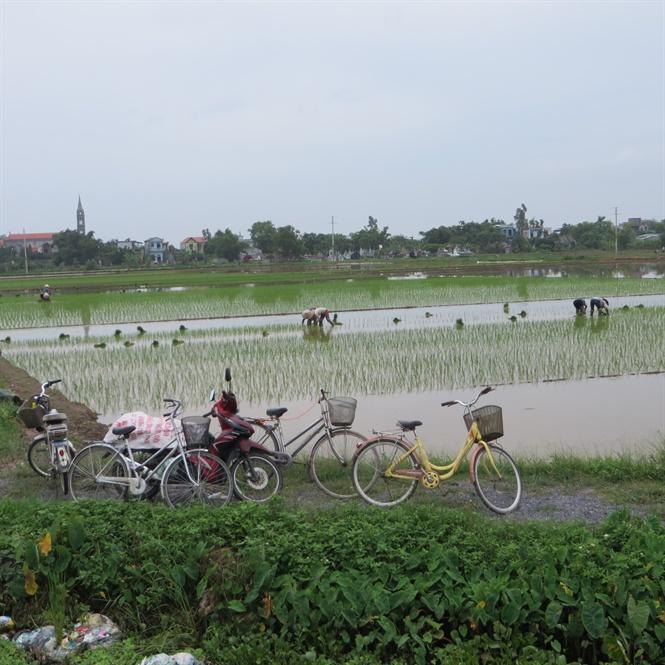 NTM làm thay đổi bộ mặt nông thôn Nam Định