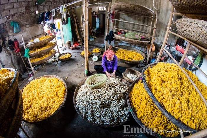 Một ngày về thăm làng tơ Cổ Chất, Nam Định