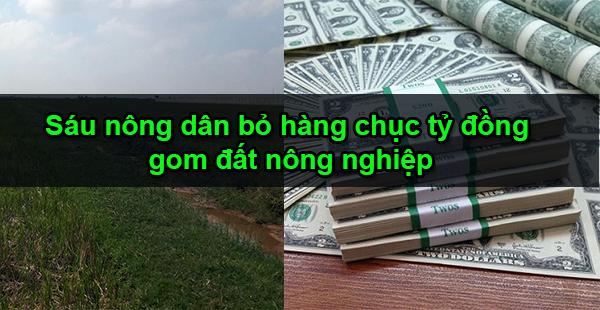 Nghĩa Hưng: Sáu nông dân bỏ hàng chục tỷ đồng gom đất nông nghiệp