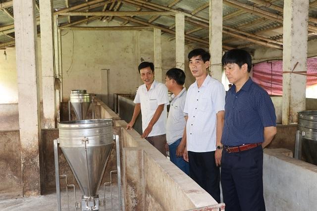 Nam Định công bố hết dịch tả lợn châu Phi
