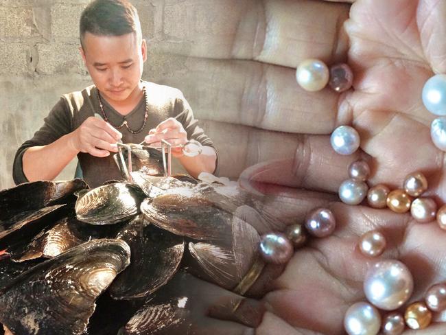 """Nam Định: Liều nuôi con cả năm nằm lì dưới ao, chỉ ăn bùn mà """"nhả"""" ra thứ ngọc quý, ʙáɴ ʟãɪ ɴửᴀ ᴛỷ"""