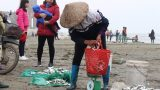 Hải Hậu: 'Xông' biển đầu năm, thu đậm 'lộc' trời