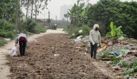 Cải thiện môi trường các làng nghề tại Nam Định