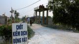 Ảnh: Rắc vôi bột trắng đường làng phòng chống cúm gia cầm ở Nam Định