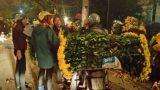 Nam Định: Nhộn nhịp chợ hoa đêm giữa lòng thành phố