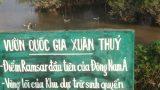 Nam Định: Vườn Quốc gia Xuân Thủy đang kêu cứu